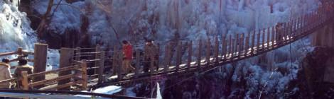 埼玉農産物ブランドアップツアー 〜秩父の農業はあの日の大雪に負けない!再建の姿を見る〜
